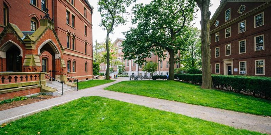 The Best Moving Platform for Harvard University Students Move
